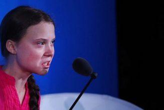 Les discours de Greta Thunberg sont riches en reproches, pauvres en solutions mais teintés d'écologisme radical, proches des discours d'extrême-gauche