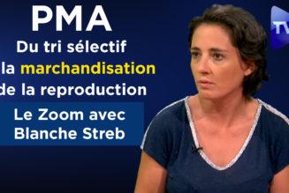 Blanche Streb et la PMA : du tri sélectif à la marchandisation de la reproduction