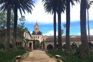 L'abbaye de Lérins : des liqueurs au bord de l'eau