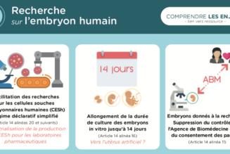 Infographie sur les graves enjeux du projet de loi sur la bioéthique
