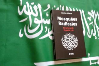 "Salafistes ""quiétistes/piétistes"" sympas ?"