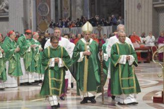 Un synode clivant, auto-référentiel et superficiel