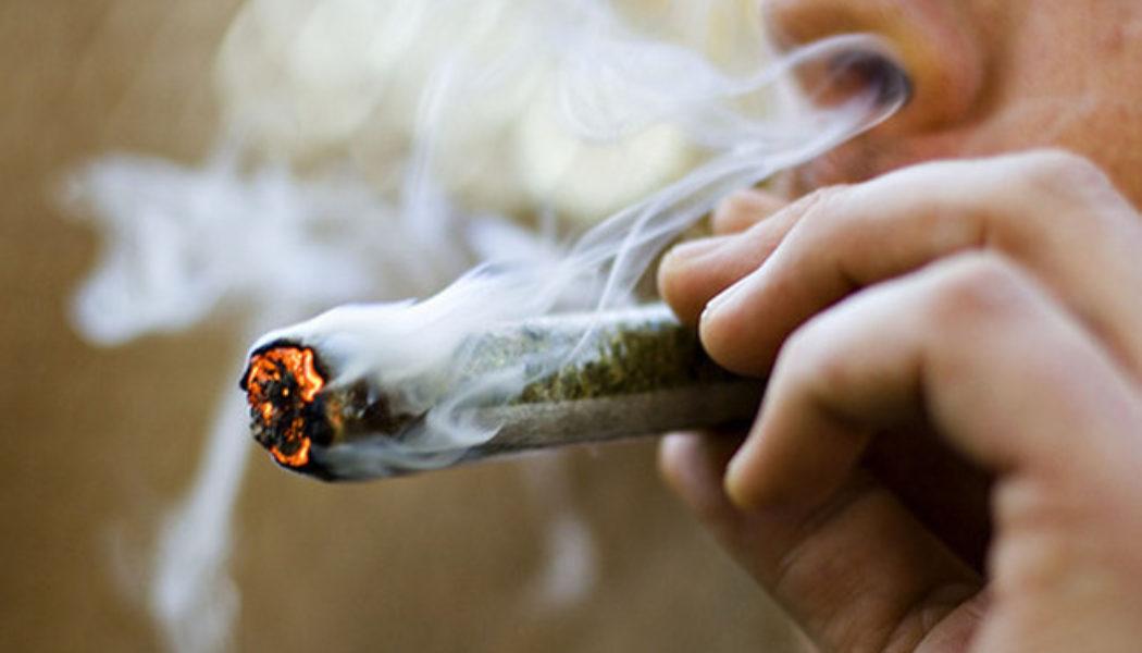 L'Assemblée nationale légalise le cannabis