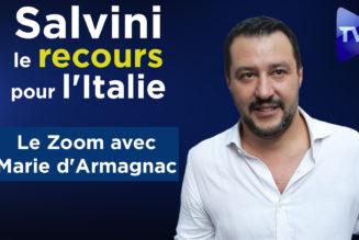 Salvini, le recours pour l'Italie