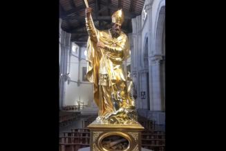 Remise à l'honneur des reliques du diocèse de Fréjus-Toulon