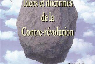 L'Eglise et la Contre-révolution