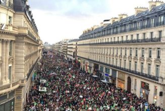 La manifestation Marchons enfants au JT de TV Libertés