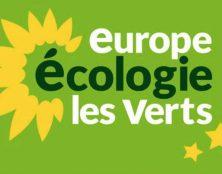 Les scouts pas assez écolos ? Un adjoint au maire de Lyon veut supprimer leurs subventions