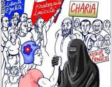 150 quartiers de France aux mains des islamistes selon la DGSI