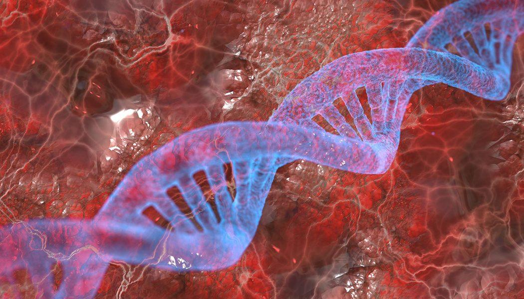 Alerte : Des chercheurs français ont déjà lancé des travaux modifiant l'ADN humain