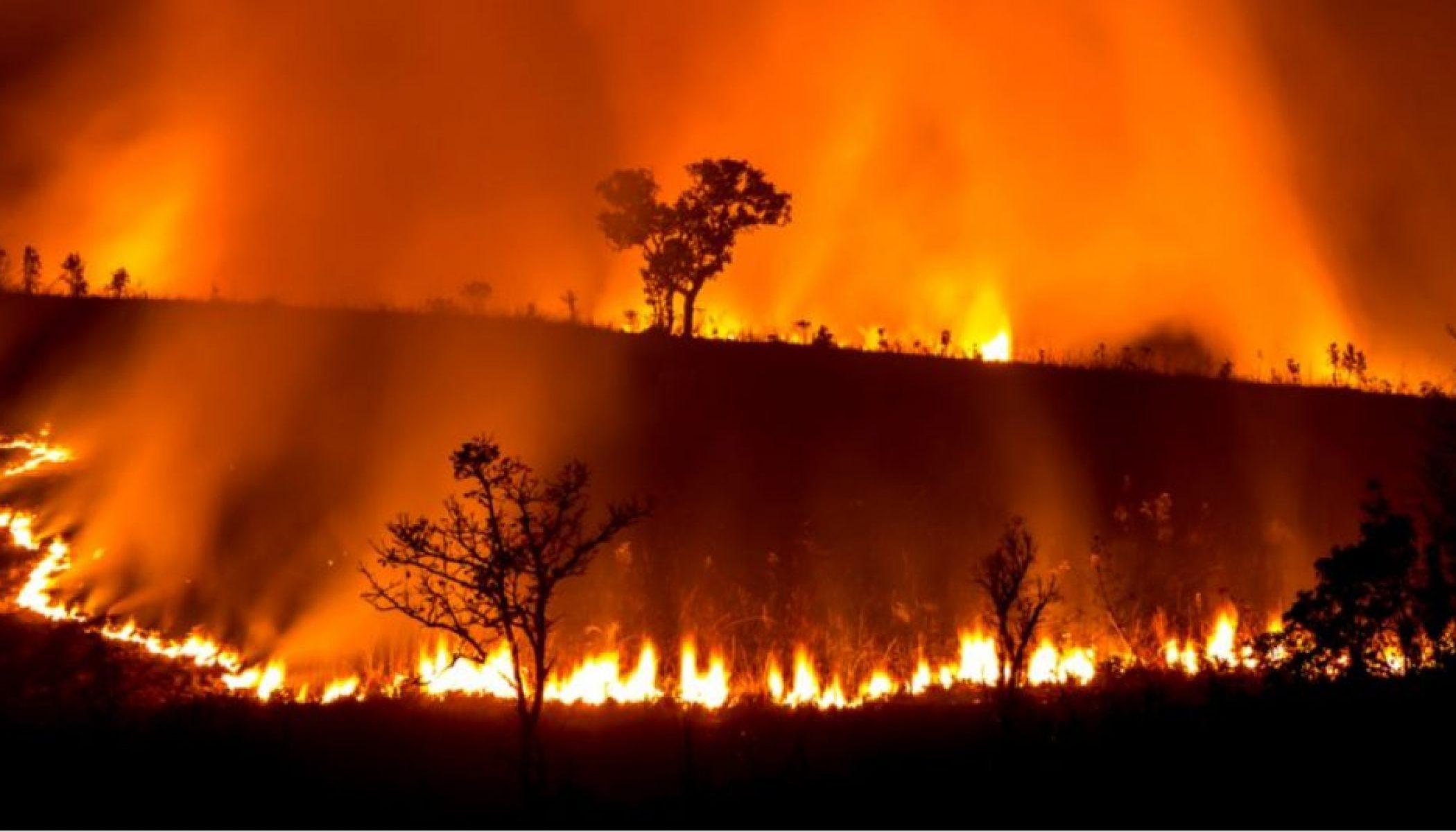 Et si les incendies en Australie étaient une conséquence de la ...