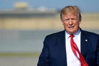 Donald Trump suspend la contribution américaine à l'OMS