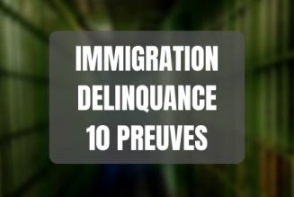 Lien entre immigration et délinquance : les 10 preuves scientifiques et sourcées
