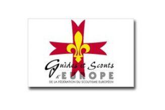 Coronavirus : les Scouts d'Europe incitent leurs aînés à s'engager