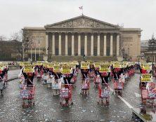 Retour en images sur l'action flash du 8 mars devant l'Assemblée nationale