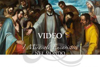 Miracles eucharistiques : qui peut sous-titrer des vidéos ?