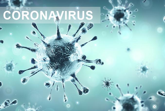 Le coronavirus, un antidote radical contre la matrice mondialiste
