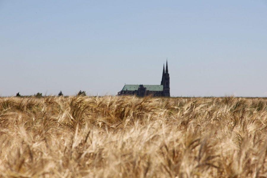 15 personnalités signent le manifeste de Chartres