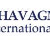 Le collège Chavagnes ouvre une classe de double Bac franco-anglais