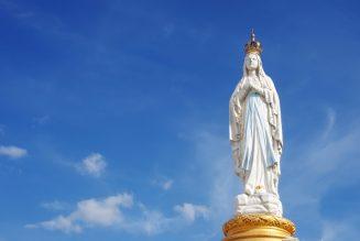 N'oubliez pas de vous inscrire à la neuvaine au Coeur immaculé de Marie