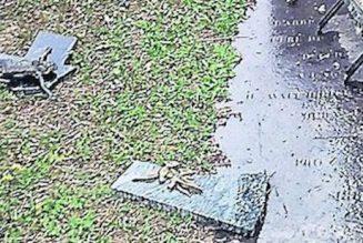 63 tombes vandalisées par satanisme