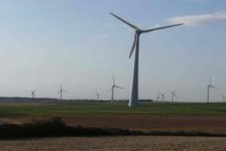 Les éoliennes détruisent l'environnement
