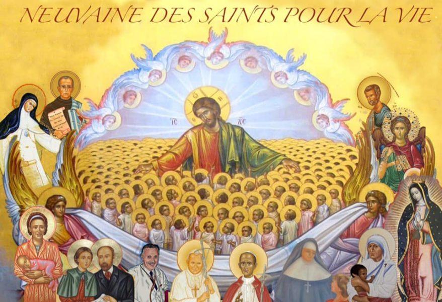 En France, l'histoire de la sainteté est riche car elle est un des pays, sinon le pays, comptant le plus de catholiques béatifiés ou canonisés