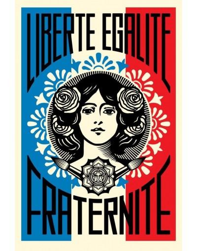 «Une liberté ne doit être réputée légitime qu'en tant qu'elle accroît notre faculté pour le bien; hors de là, jamais.» Léon XIII