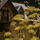 Monastère de Bois-Salair : une jeune communauté de moniales orthodoxes en Mayenne