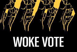 Le woke, ou la déferlante de l'extrême gauche américaine