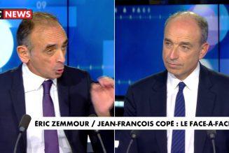 """Eric Zemmour : """"Vous n'avez absolument rien fait quand vous étiez au pouvoir (…) Vous montrez votre soumission à la gauche"""""""