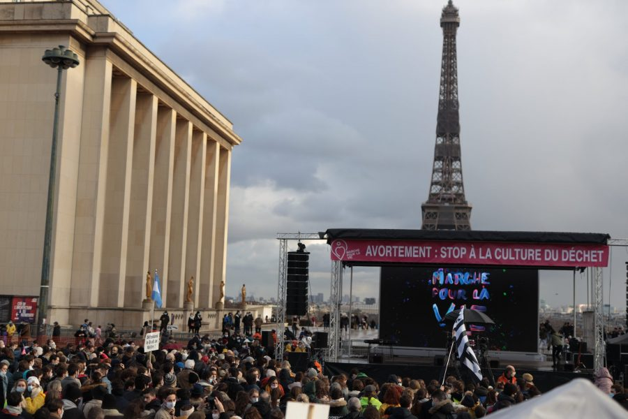 Double mobilisation pour la vie : dans la rue à Paris, et sur les réseaux