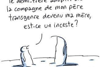 Le lobby LGBT rendu hystérique par un dessin publié dans Le Monde