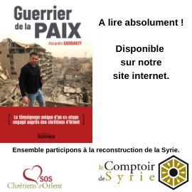 Livre : Guerrier de la Paix