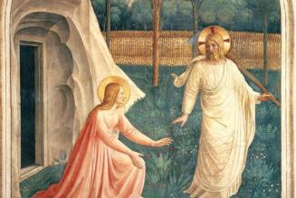 Scimus Christum surrexísse a mórtuis vere