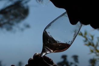 Les Rosés Caritatis : deux étoiles dans le ciel de Provence