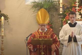 Mgr Huonder a célébré la messe de Pentecôte au séminaire de la FSSPX en Allemagne