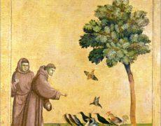 4-9 septembre : L'Italie de saint François avec Odeia