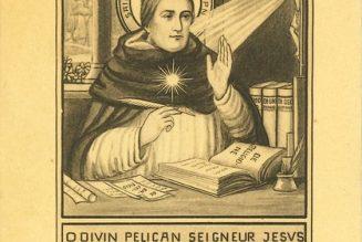 Saint Thomas d'Aquin, patron de l'université