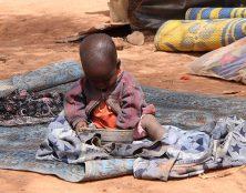 Attaque musulmane au Niger