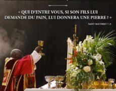 Lettre aux catholiques du monde entier – Stop Traditionis Custodes
