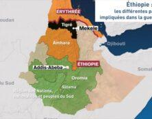 Conférence au Parlement européen sur la guerre du Tigré en Éthiopie