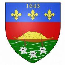 Logo du groupe 973 – Guyane