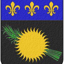 Logo du groupe 971 – Guadeloupe